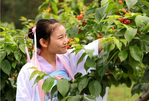 首届中国仁寿天府生长节暨文林镇第二届樱桃文化节开幕