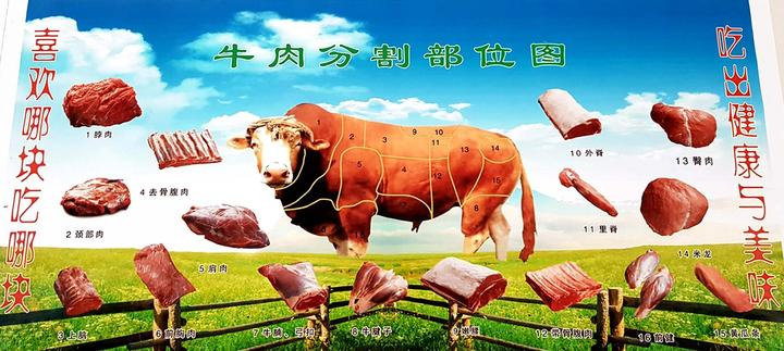 创业致富领头雁李洁:牛羊为根基_倡导绿色有机化